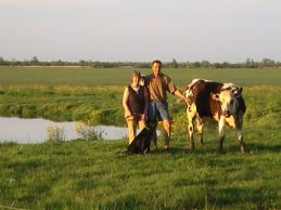 Monier Gérard : Le Bas Fief : Agriculture bio